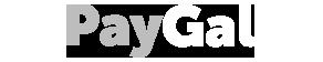 PayGal logo type